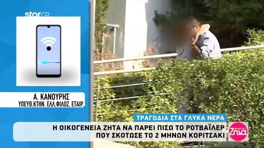 Τραγωδία στα Γλυκά Νερά: Η οικογένεια του μωρού θέλει πίσω το ροτβάιλερ-Τι λέει ο υπεύθυνος της Ελληνικής Φιλοζωικής Εταιρείας
