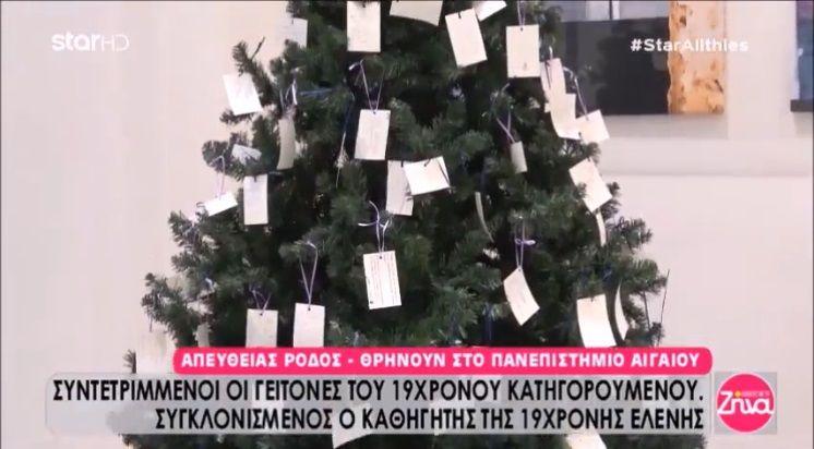 Ένα δέντρο αλλιώτικο από τα άλλα...Λυπημένο και γεμάτο μηνύματα για την αδικοχαμένη Ελένη από τους συμφοιτητές της (Video)