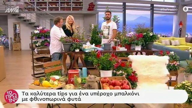 Ο Νίκος Κωνστάντης μας δείχνει πως να μεταμορφώσουμε το μπαλκόνι μας με φθινοπωρινά φυτά!ι