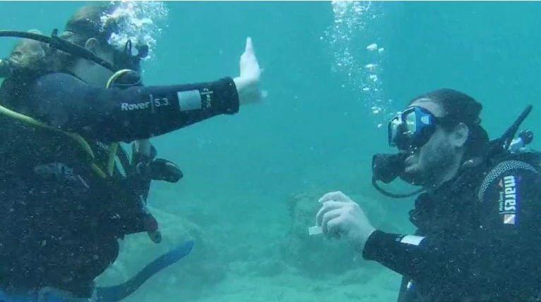 """Αλόννησος: Υποβρύχια… πρόταση γάμου – Η νύφη είπε το """"ναι"""" κάτω από το νερό (Video)"""