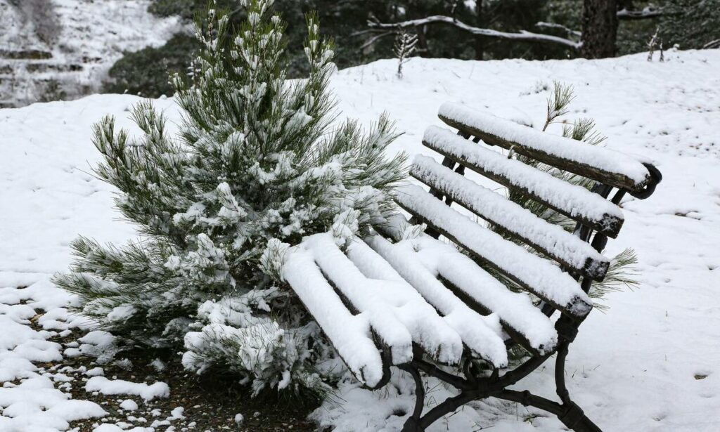 Κακοκαιρία «Μήδεια: Προειδοποίηση Μαρουσάκη – Πότε θα χιονίσει σε Αθήνα και Θεσσαλονίκη
